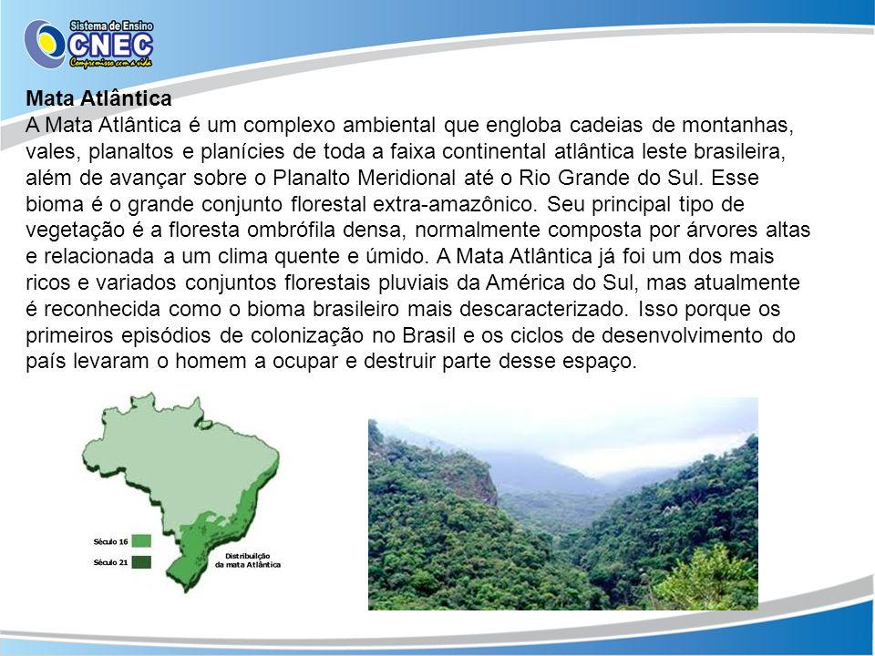 Mata Atlântica A Mata Atlântica é um complexo ambiental que engloba cadeias de montanhas, vales, planaltos e planícies de toda a faixa continental atl