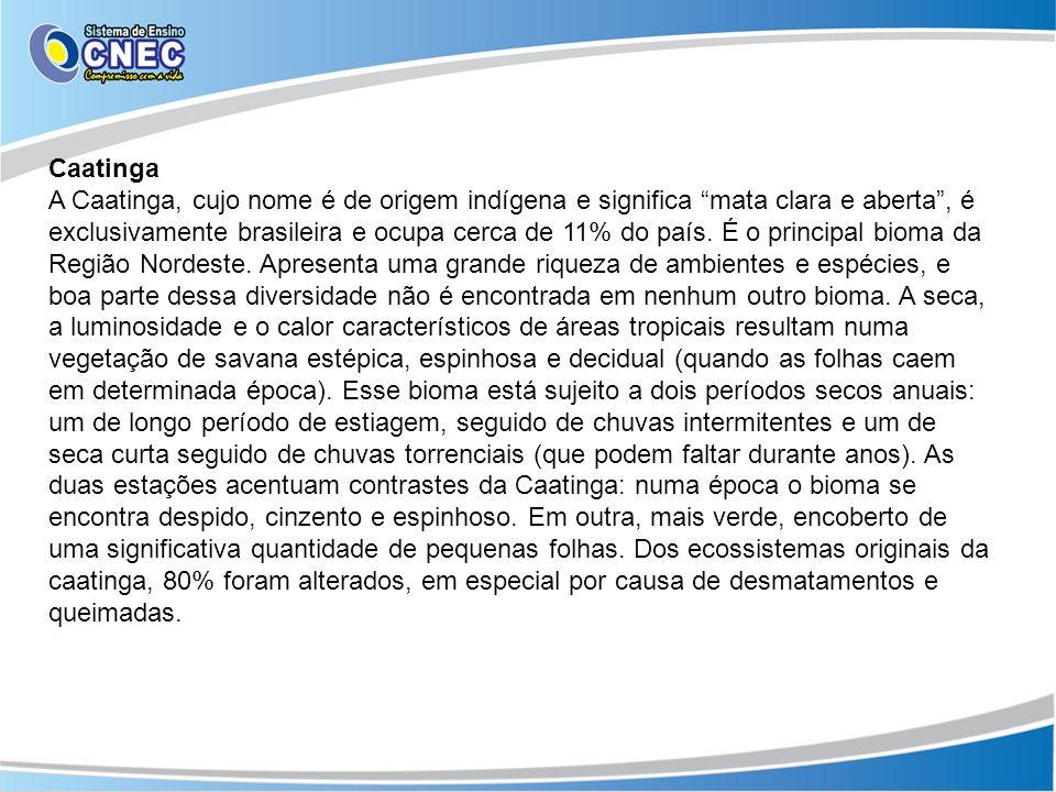 Caatinga A Caatinga, cujo nome é de origem indígena e significa mata clara e aberta, é exclusivamente brasileira e ocupa cerca de 11% do país. É o pri