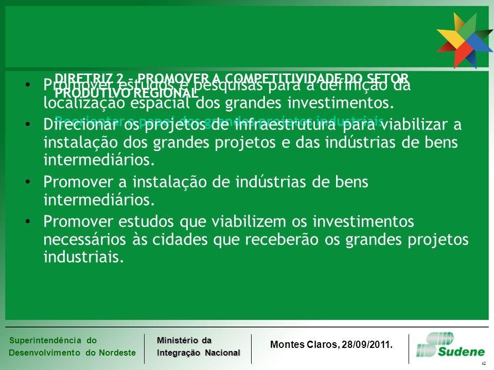 Superintendência do Desenvolvimento do Nordeste Ministério da Integração Nacional Montes Claros, 28/09/2011. 42 DIRETRIZ 2 - PROMOVER A COMPETITIVIDAD