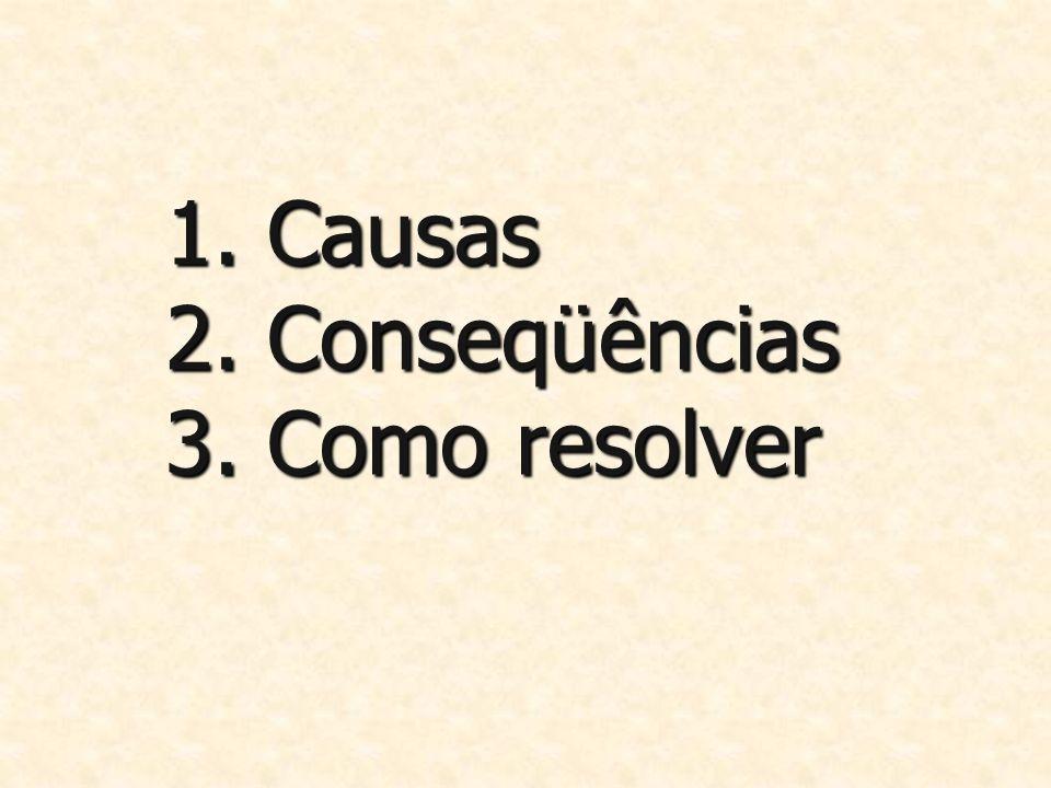1. Causas 2. Conseqüências 3. Como resolver