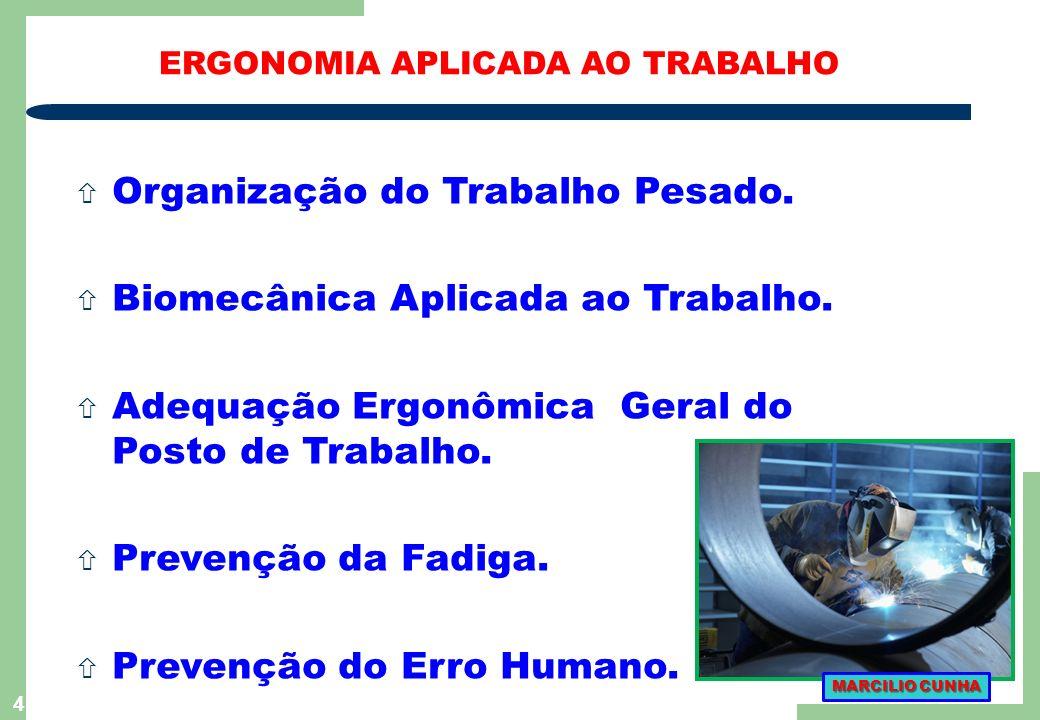 4 ñ Organização do Trabalho Pesado.ñ Biomecânica Aplicada ao Trabalho.