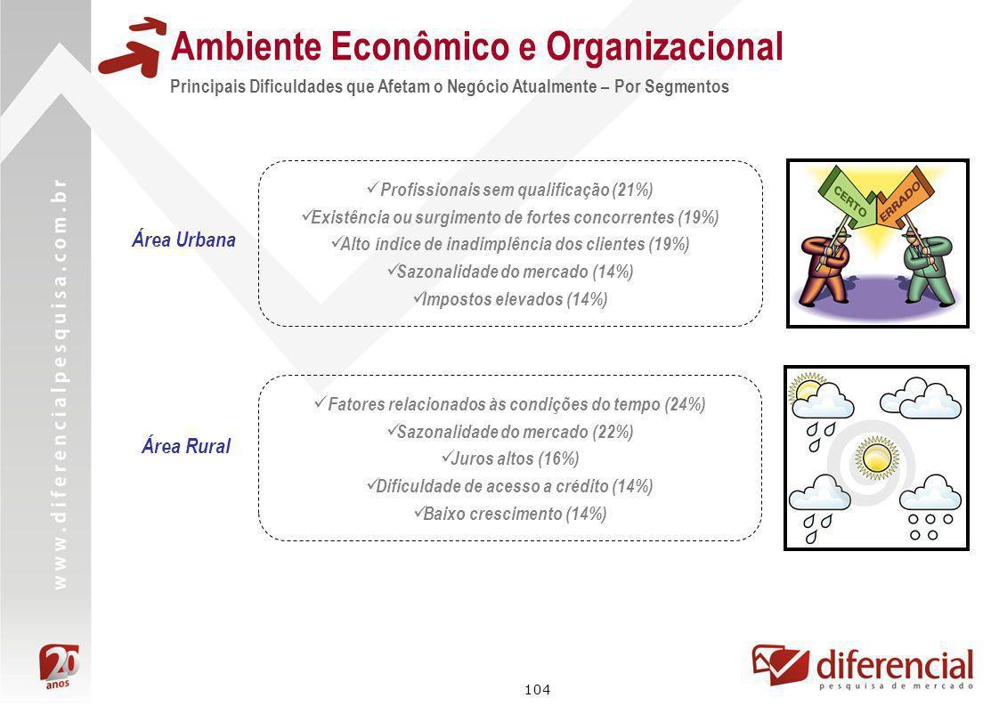 104 Principais Dificuldades que Afetam o Negócio Atualmente – Por Segmentos Ambiente Econômico e Organizacional Área Rural Área Urbana Profissionais s