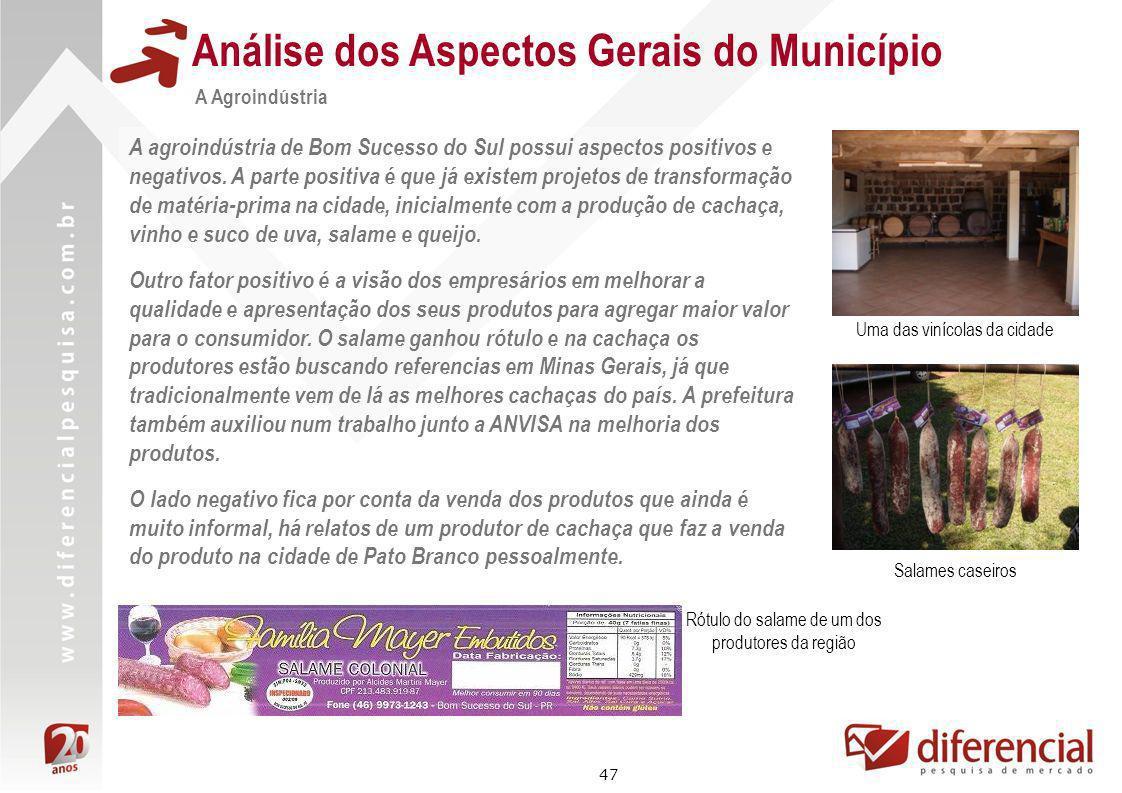 47 Análise dos Aspectos Gerais do Município A Agroindústria A agroindústria de Bom Sucesso do Sul possui aspectos positivos e negativos. A parte posit