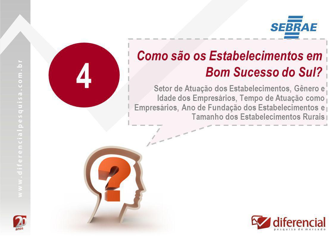 Como são os Estabelecimentos em Bom Sucesso do Sul? Setor de Atuação dos Estabelecimentos, Gênero e Idade dos Empresários, Tempo de Atuação como Empre