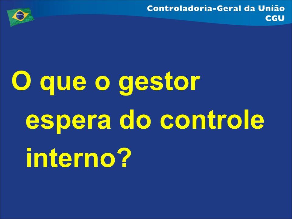 Agenda 1 - Desafios do Controle Interno 2 - Atividades e resultados da CGU 3 – Interação com outros órgãos 4 - Perspectivas