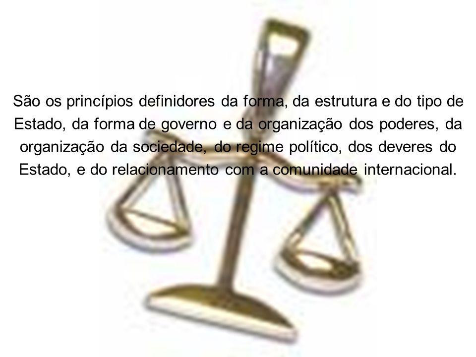 São os princípios definidores da forma, da estrutura e do tipo de Estado, da forma de governo e da organização dos poderes, da organização da sociedad