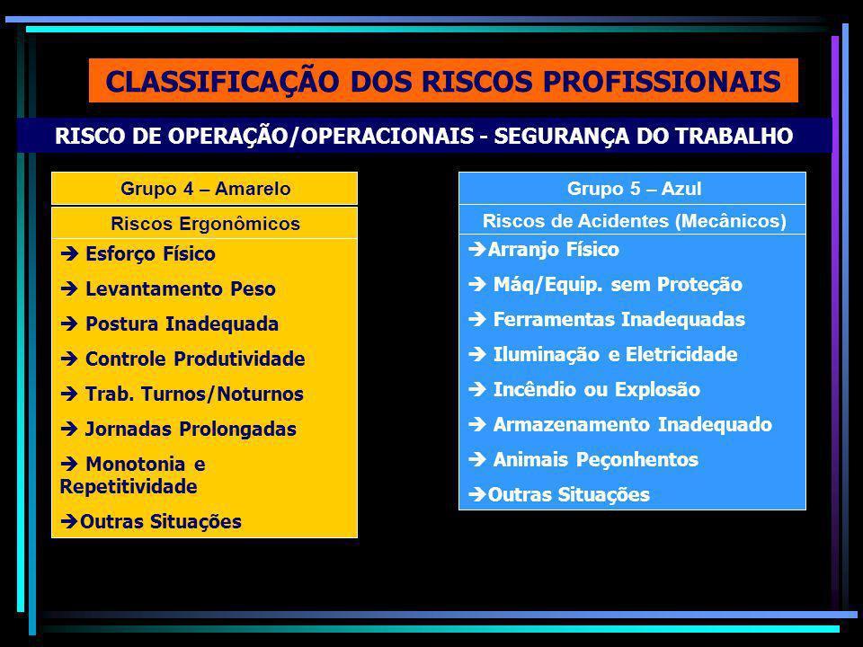 CLASSIFICAÇÃO DOS RISCOS PROFISSIONAIS Grupo 4 – Amarelo RISCO DE OPERAÇÃO/OPERACIONAIS - SEGURANÇA DO TRABALHO Riscos Ergonômicos Esforço Físico Levantamento Peso Postura Inadequada Controle Produtividade Trab.