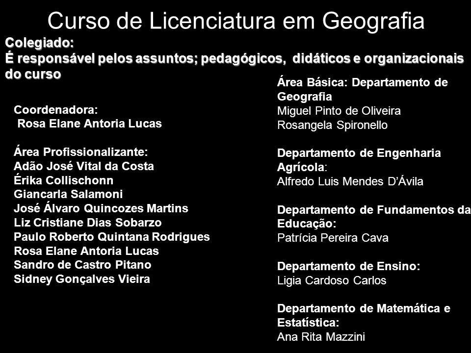 Curso de Licenciatura em Geografia Coordenadora: Rosa Elane Antoria Lucas Área Profissionalizante: Adão José Vital da Costa Érika Collischonn Giancarl