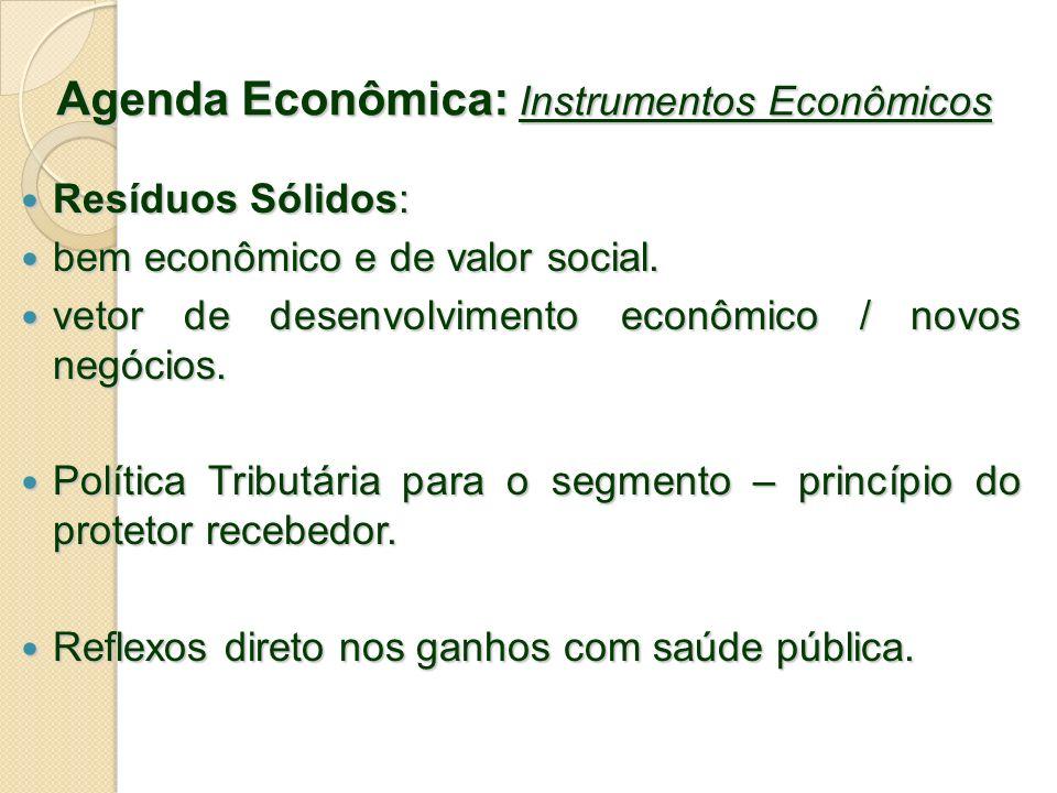 Agenda Econômica: Instrumentos Econômicos Resíduos Sólidos: Resíduos Sólidos: bem econômico e de valor social. bem econômico e de valor social. vetor