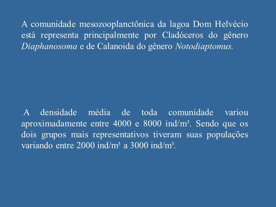 A comunidade mesozooplanctônica da lagoa Dom Helvécio está representa principalmente por Cladóceros do gênero Diaphanosoma e de Calanoida do gênero No