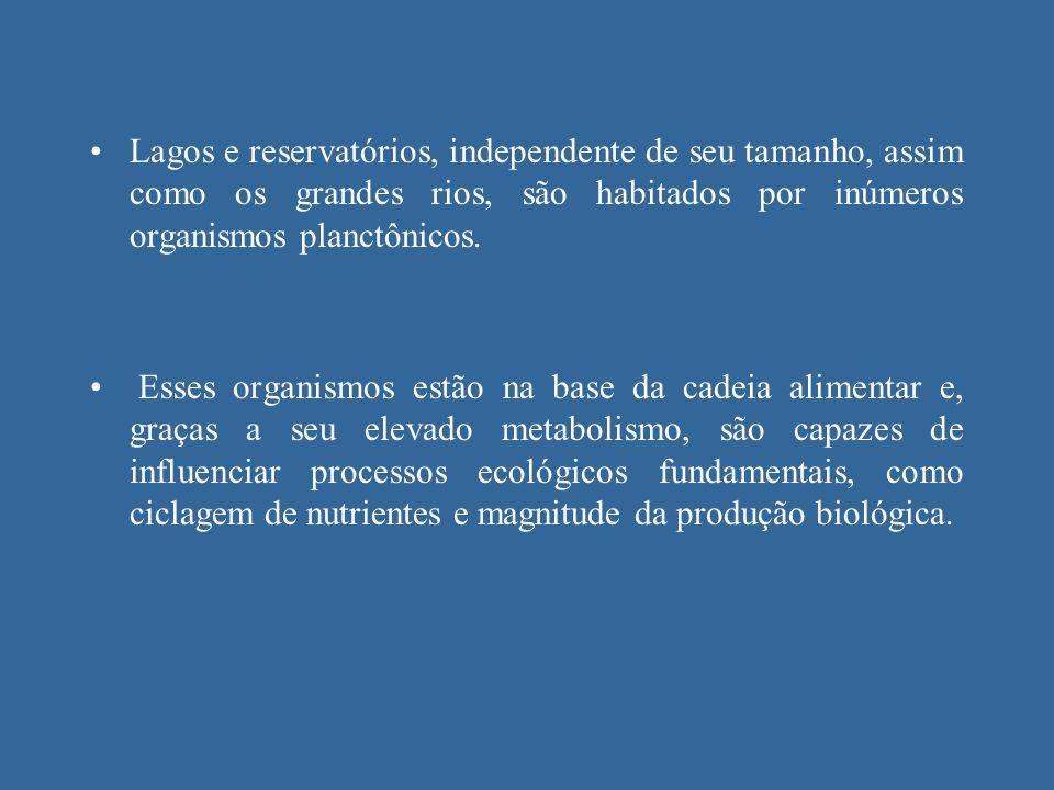 Lagos e reservatórios, independente de seu tamanho, assim como os grandes rios, são habitados por inúmeros organismos planctônicos. Esses organismos e