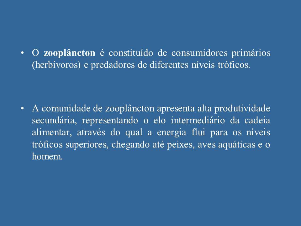 O zooplâncton é constituído de consumidores primários (herbívoros) e predadores de diferentes níveis tróficos. A comunidade de zooplâncton apresenta a