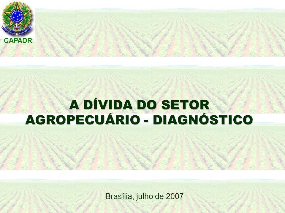CAPADR A DÍVIDA DO SETOR AGROPECUÁRIO - DIAGNÓSTICO Brasília, julho de 2007