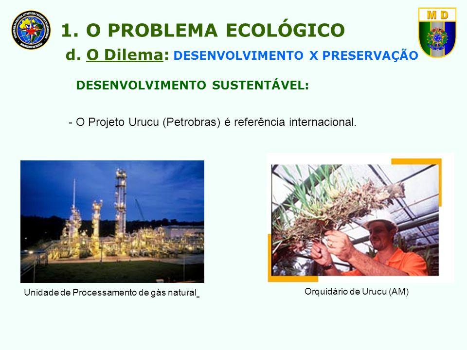 DESENVOLVIMENTO SUSTENTÁVEL: - O Projeto Urucu (Petrobras) é referência internacional. Unidade de Processamento de gás natural Orquidário de Urucu (AM