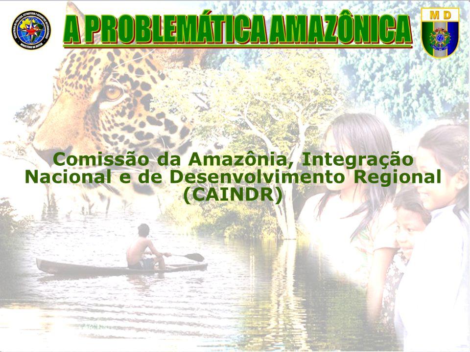 Qual é o futuro que o Brasil deseja para a sociedade amazônica, os índios e os recursos naturais da Região.