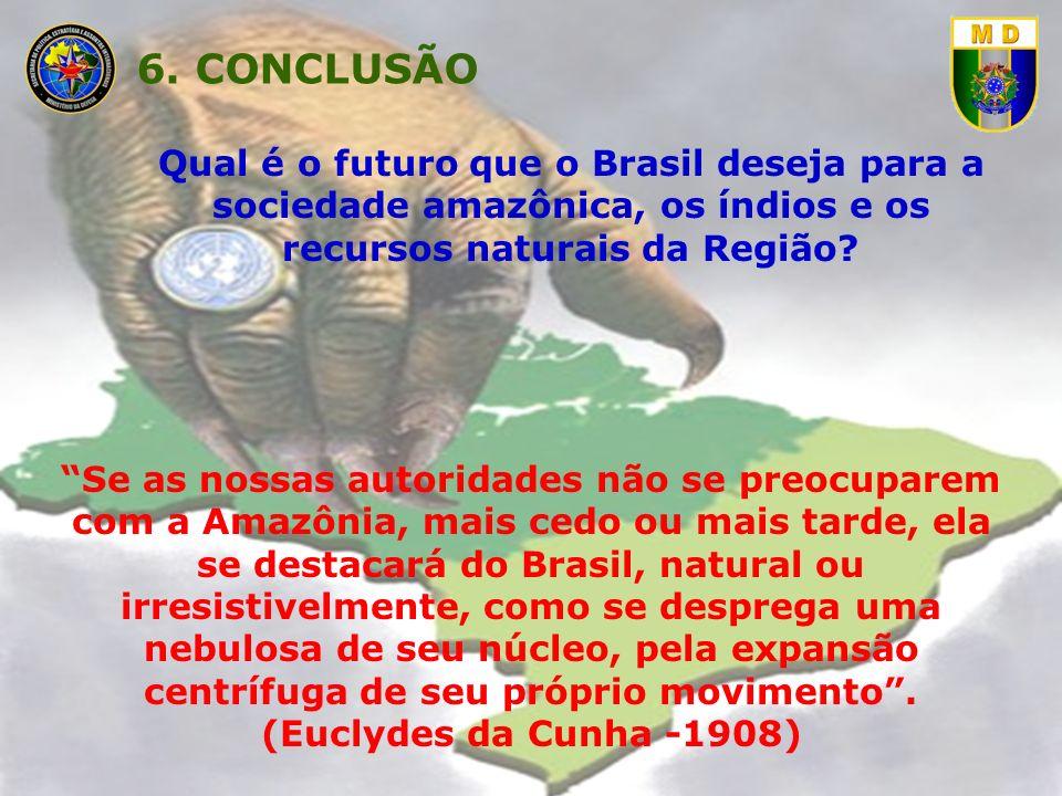 Qual é o futuro que o Brasil deseja para a sociedade amazônica, os índios e os recursos naturais da Região? Se as nossas autoridades não se preocupare