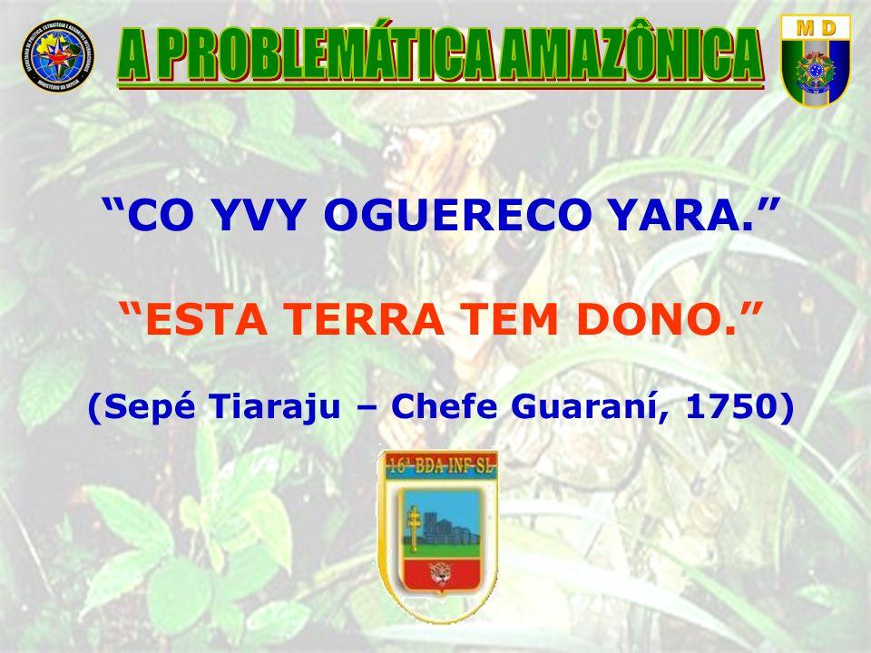 CO YVY OGUERECO YARA. ESTA TERRA TEM DONO. (Sepé Tiaraju – Chefe Guaraní, 1750)