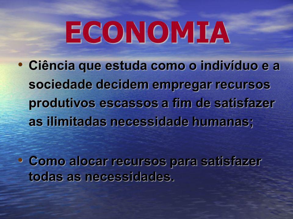 DESENVOLVIMENTO ECONÔMICO Preocupa-se com a melhoria do padrão de vida da coletividade; Preocupa-se com a melhoria do padrão de vida da coletividade; Enfoque macroeconômico porém concentrado em questões estruturais e de longo prazo: Enfoque macroeconômico porém concentrado em questões estruturais e de longo prazo: –Progresso tecnológico; –Distribuição de renda; –Estratégias de crescimento.