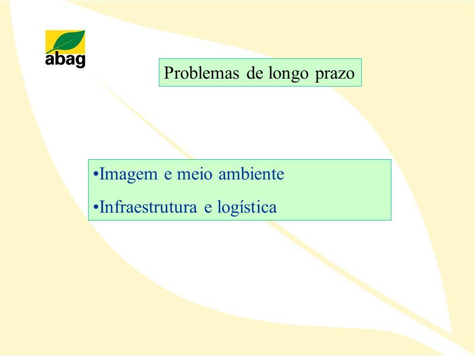 Problemas de longo prazo Imagem e meio ambiente Infraestrutura e logística