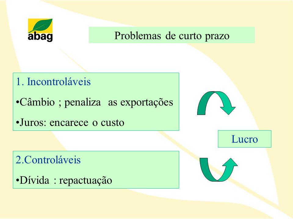 Problemas de curto prazo 1. Incontroláveis Câmbio ; penaliza as exportações Juros: encarece o custo 2.Controláveis Dívida : repactuação Lucro