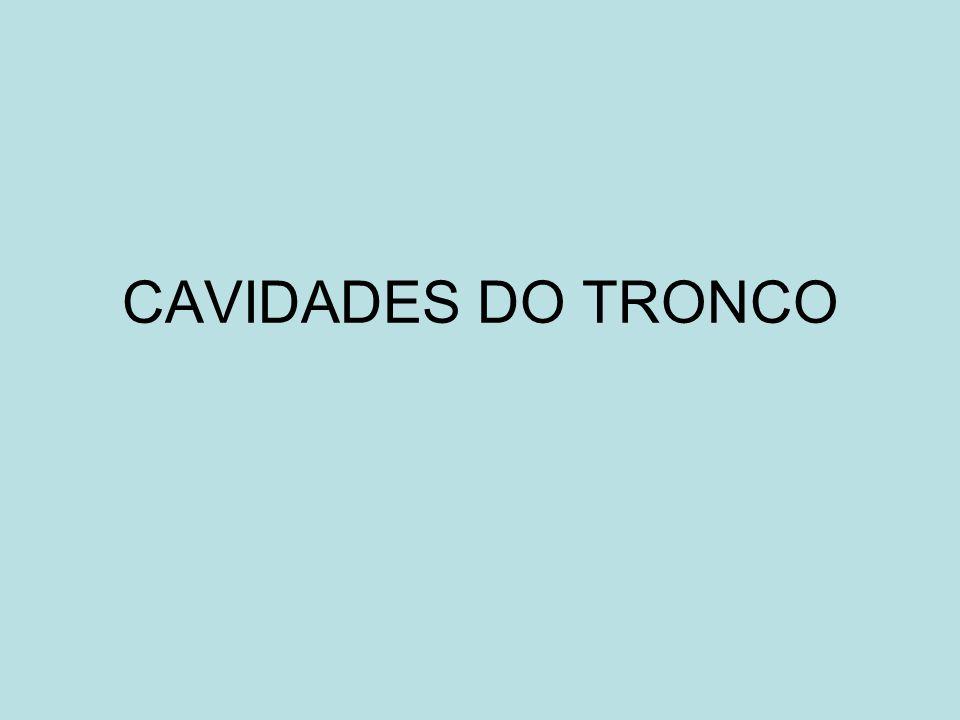 CAVIDADES DO TRONCO