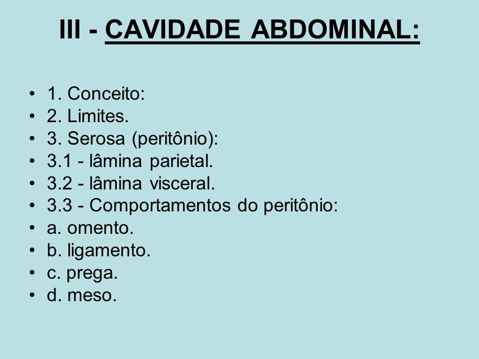 III - CAVIDADE ABDOMINAL: 1. Conceito: 2. Limites. 3. Serosa (peritônio): 3.1 - lâmina parietal. 3.2 - lâmina visceral. 3.3 - Comportamentos do peritô