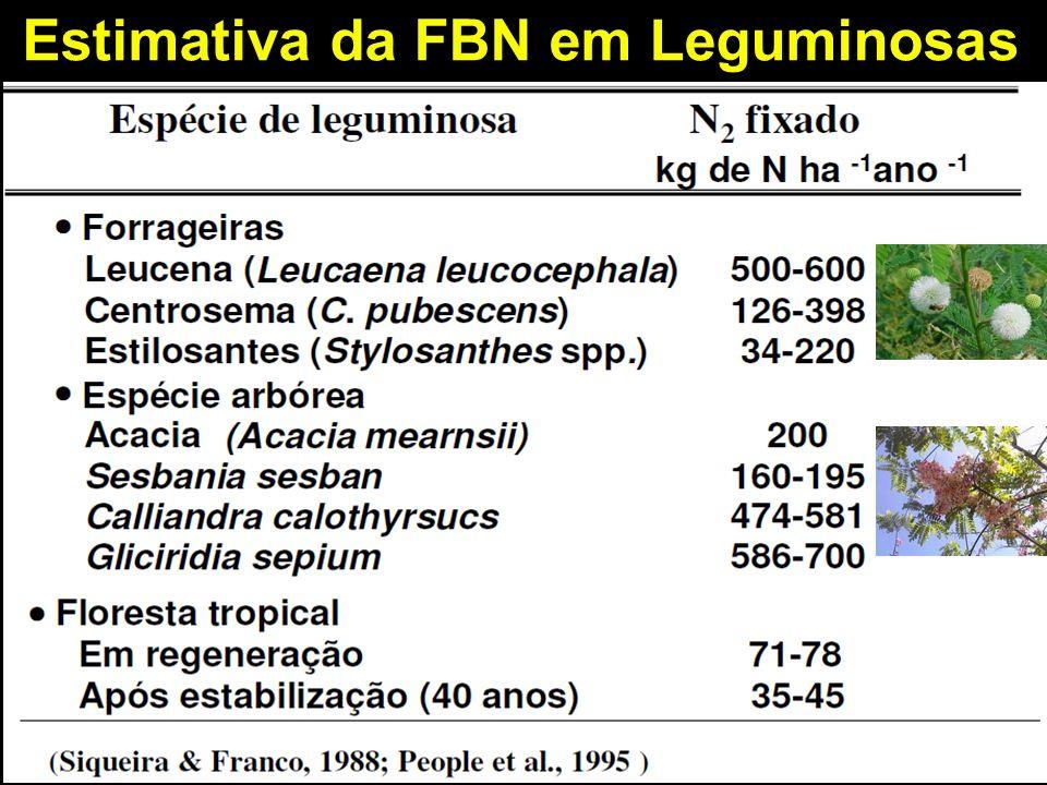 Estimativa da FBN em Leguminosas 11