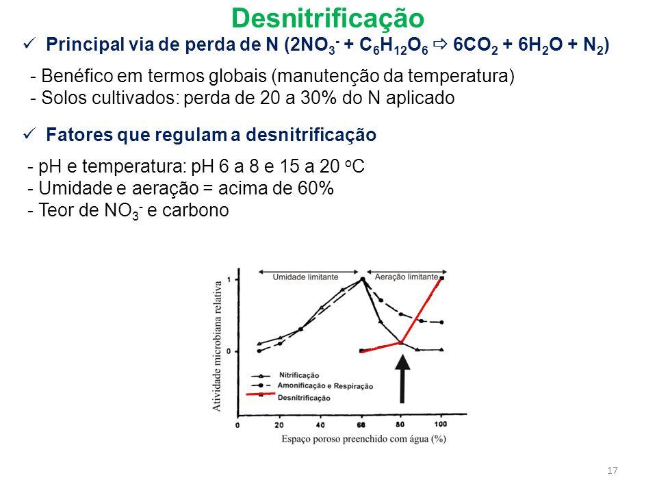 Desnitrificação Principal via de perda de N (2NO 3 - + C 6 H 12 O 6 6CO 2 + 6H 2 O + N 2 ) - Benéfico em termos globais (manutenção da temperatura) -
