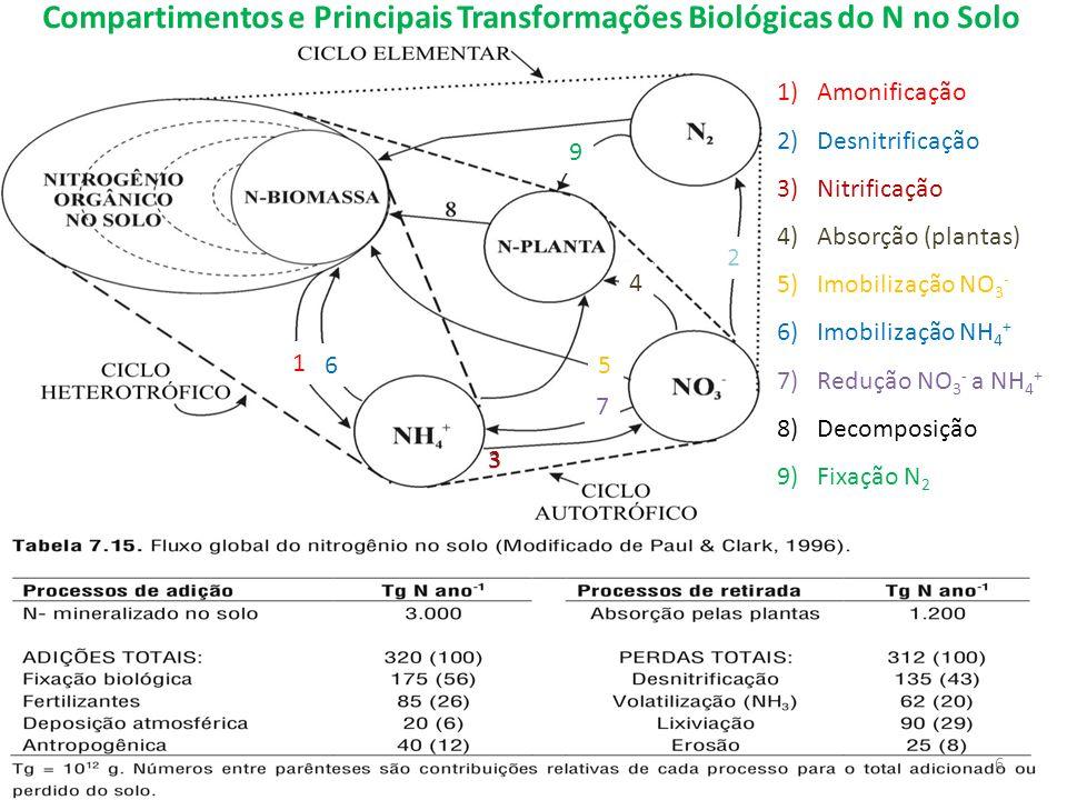 Compartimentos e Principais Transformações Biológicas do N no Solo 1)Amonificação 2)Desnitrificação 3)Nitrificação 4)Absorção (plantas) 5)Imobilização