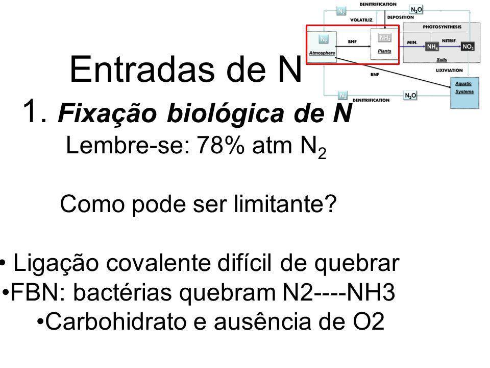 Destino do NH 4 + 1.Imobilizado por microorganismos 2.Absorvido pelas plantas 3.Adsorvido pelos minerais de argila do solo 4.Estabilizado pelo pool de matéria orgânica do solo 5.Volatilizado com amônia (NH 3 ): perda do ecossistema 6.Oxidados por microorganismos a nitrato (NO 3 - )