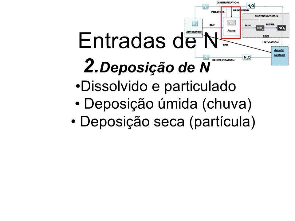 Produção de NO 3 - ou nitrificação Oxidação do NH 4 + para NO 2 - e NO 2 - para NO 3 - Bactérias quimioautotróficas Bactérias aeróbias que conseguem C do CO 2 tiram energia da oxidação do NH 4 + para NO 3 -