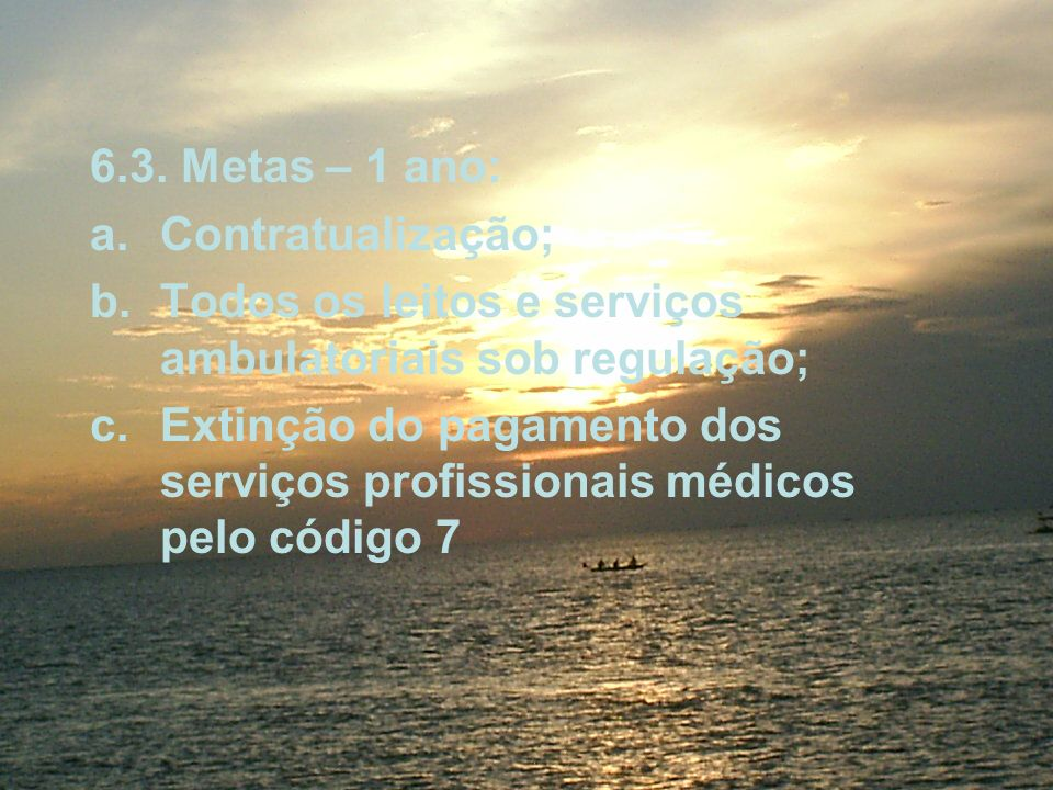 6.3. Metas – 1 ano: a.Contratualização; b.Todos os leitos e serviços ambulatoriais sob regulação; c.Extinção do pagamento dos serviços profissionais m