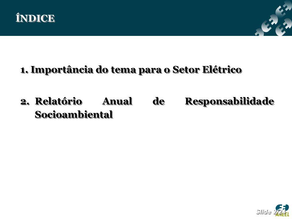 ÍNDICE 1. Importância do tema para o Setor Elétrico 2.Relatório Anual de Responsabilidade Socioambiental 1. Importância do tema para o Setor Elétrico