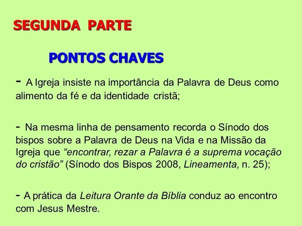 PONTOS CHAVES SEGUNDA PARTE - A Igreja insiste na importância da Palavra de Deus como alimento da fé e da identidade cristã; - Na mesma linha de pensa