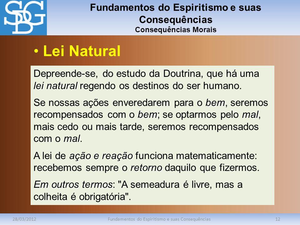 Fundamentos do Espiritismo e suas Consequências Consequências Morais 28/03/2012Fundamentos do Espiritismo e suas Consequências12 lei natural Depreende