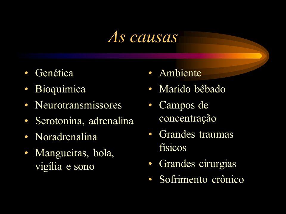 As causas Genética Bioquímica Neurotransmissores Serotonina, adrenalina Noradrenalina Mangueiras, bola, vigília e sono Ambiente Marido bêbado Campos d