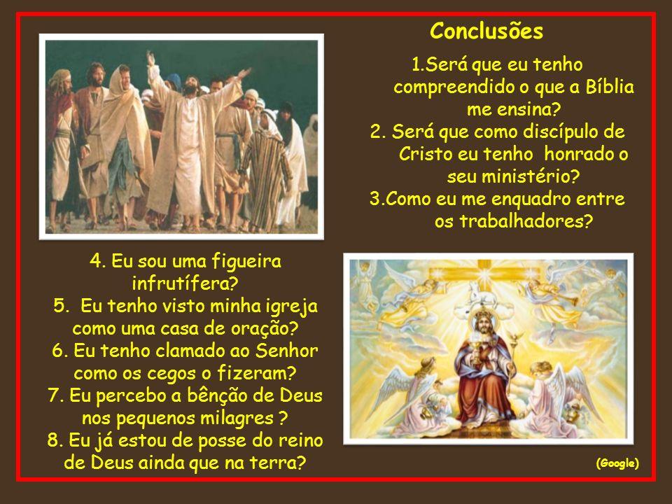 Conclusões (Google) 1.Será que eu tenho compreendido o que a Bíblia me ensina? 2. Será que como discípulo de Cristo eu tenho honrado o seu ministério?