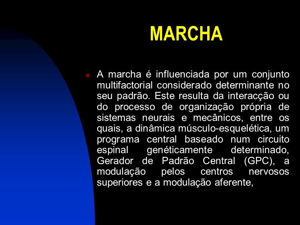 MARCHA A marcha é influenciada por um conjunto multifactorial considerado determinante no seu padrão. Este resulta da interacção ou do processo de org