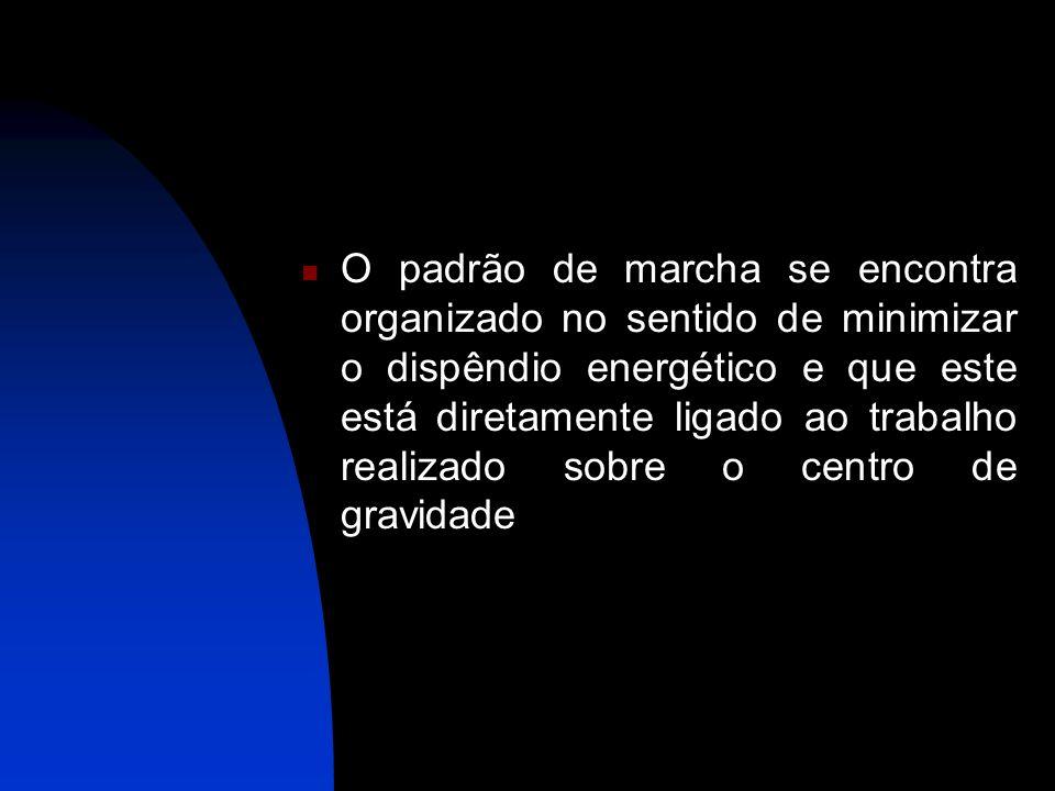 O padrão de marcha se encontra organizado no sentido de minimizar o dispêndio energético e que este está diretamente ligado ao trabalho realizado sobr