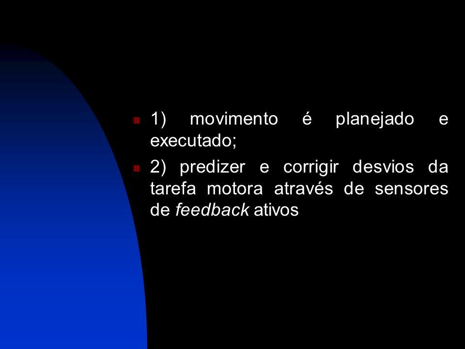 1) movimento é planejado e executado; 2) predizer e corrigir desvios da tarefa motora através de sensores de feedback ativos