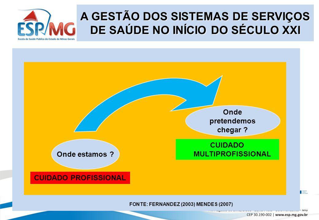 Onde estamos ? CUIDADO PROFISSIONAL Onde pretendemos chegar ? CUIDADO MULTIPROFISSIONAL FONTE: FERNANDEZ (2003) MENDES (2007) A GESTÃO DOS SISTEMAS DE