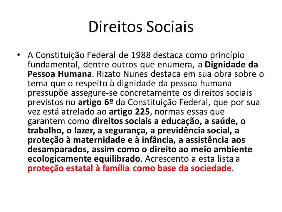 Direitos Sociais A Constituição Federal de 1988 destaca como princípio fundamental, dentre outros que enumera, a Dignidade da Pessoa Humana. Rizato Nu
