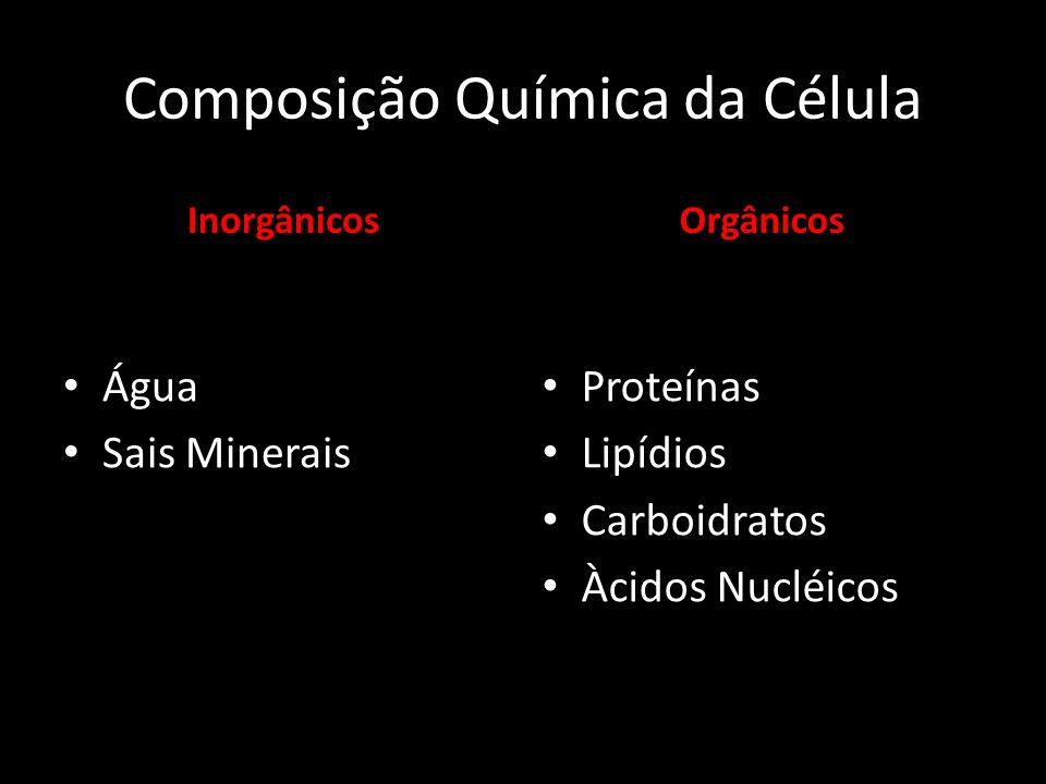 Inorgânicos Água Sais Minerais Orgânicos Proteínas Lipídios Carboidratos Àcidos Nucléicos