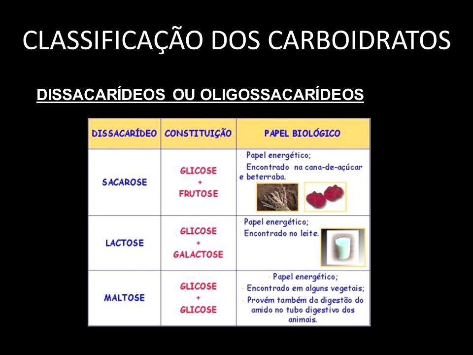 CLASSIFICAÇÃO DOS CARBOIDRATOS DISSACARÍDEOS OU OLIGOSSACARÍDEOS