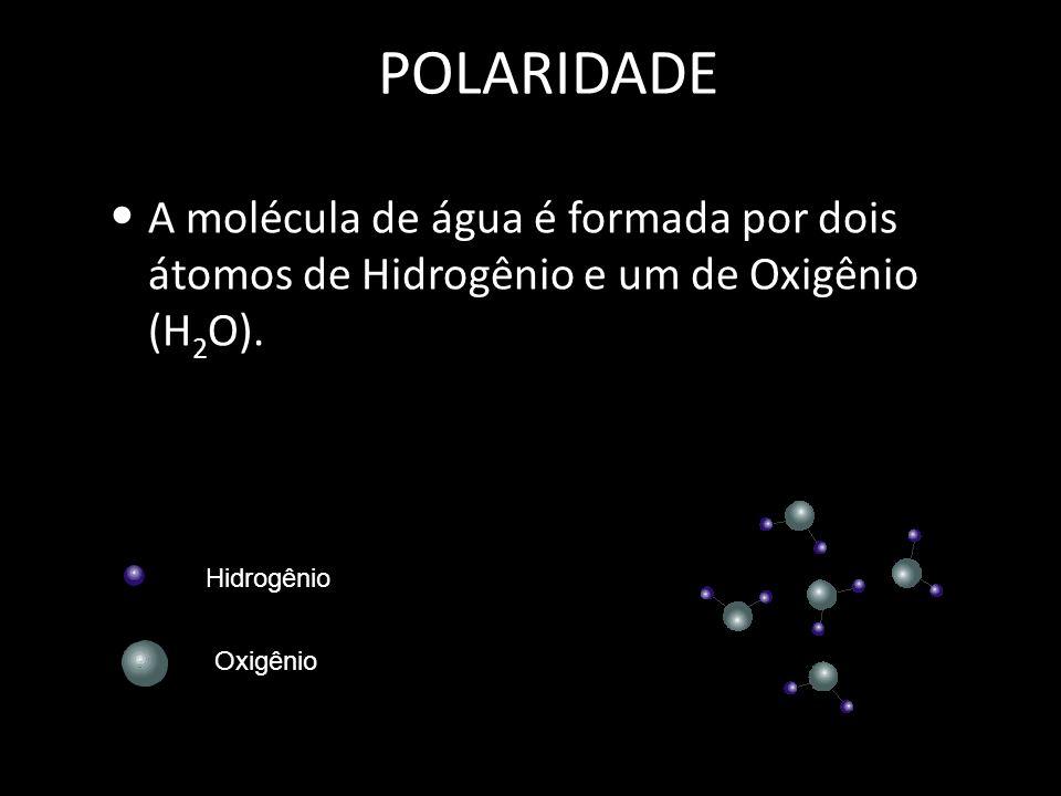 POLARIDADE A molécula de água é formada por dois átomos de Hidrogênio e um de Oxigênio (H 2 O).