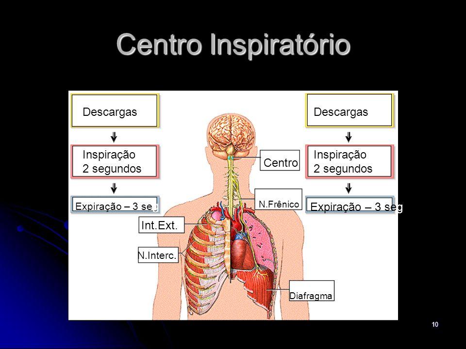 10 Centro Inspiratório Centro N.Frênico Diafragma N.Interc. Int.Ext. Descargas Inspiração 2 segundos Expiração – 3 se g Descargas Inspiração 2 segundo