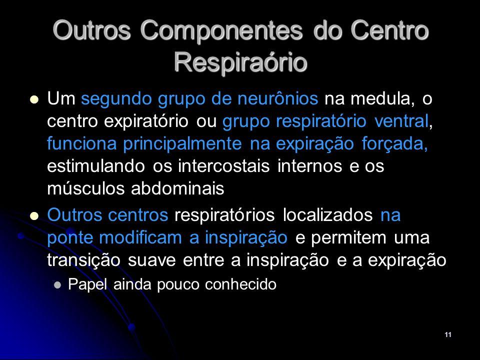 11 Outros Componentes do Centro Respiraório Um segundo grupo de neurônios na medula, o centro expiratório ou grupo respiratório ventral, funciona prin
