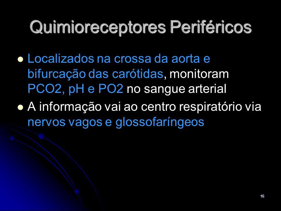 16 Quimioreceptores Periféricos Localizados na crossa da aorta e bifurcação das carótidas, monitoram PCO2, pH e PO2 no sangue arterial A informação va