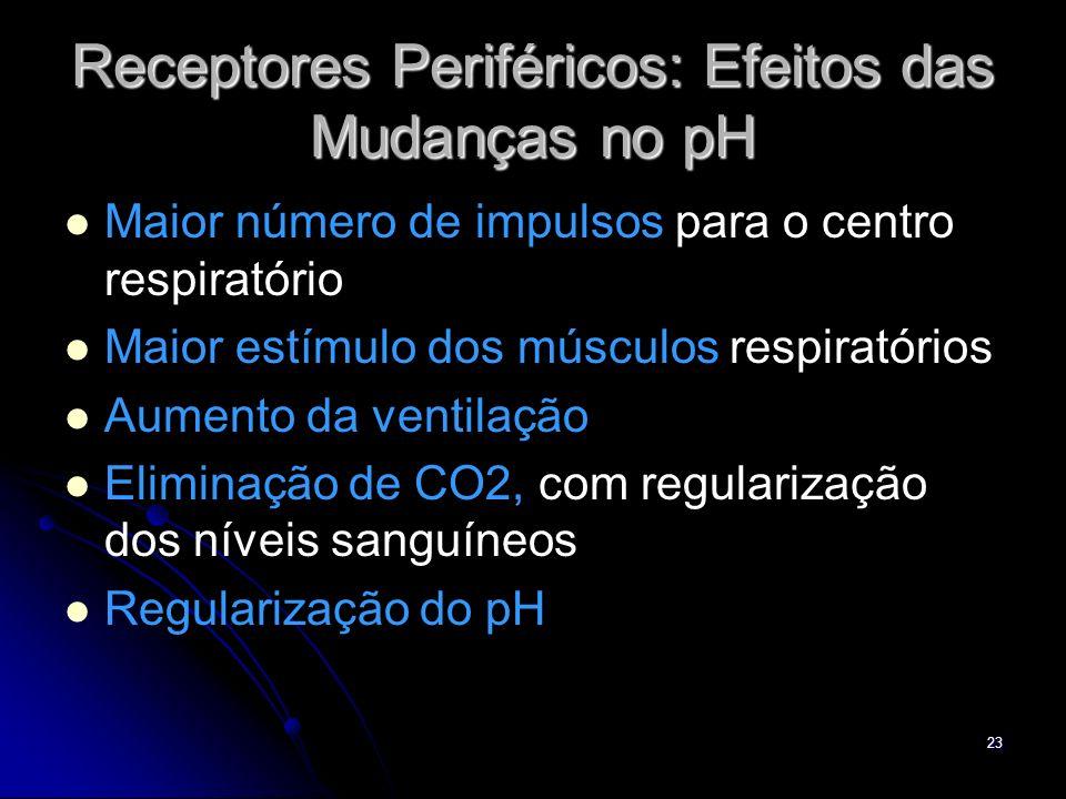 23 Receptores Periféricos: Efeitos das Mudanças no pH Maior número de impulsos para o centro respiratório Maior estímulo dos músculos respiratórios Au