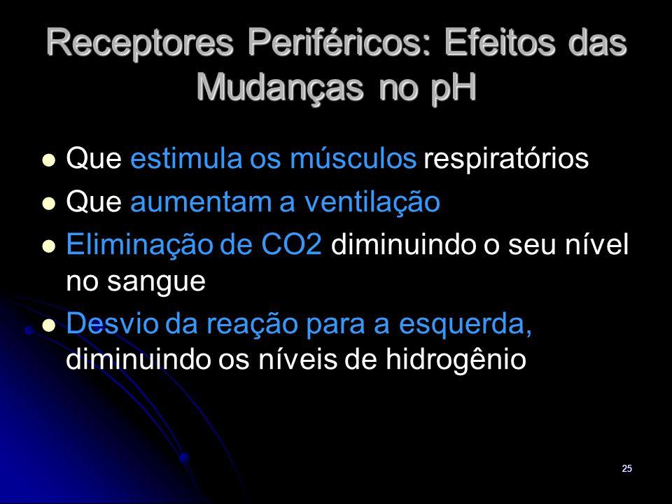 25 Receptores Periféricos: Efeitos das Mudanças no pH Que estimula os músculos respiratórios Que aumentam a ventilação Eliminação de CO2 diminuindo o